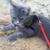 Zdjęcie profilowe Jula