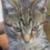 Zdjęcie profilowe adamkopanski