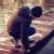 Zdjęcie profilowe domeczekk