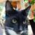 Zdjęcie profilowe Laura Z