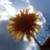 Zdjęcie profilowe S.Zuzanna