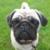 Zdjęcie profilowe Ola